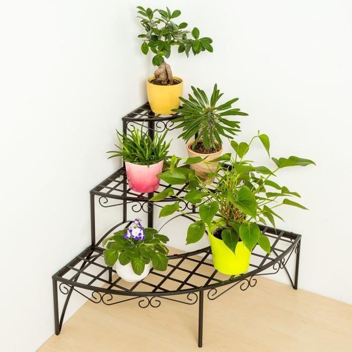 plante langue belle mere. Black Bedroom Furniture Sets. Home Design Ideas
