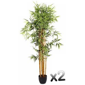 pot bambou achat vente pot bambou pas cher cdiscount. Black Bedroom Furniture Sets. Home Design Ideas