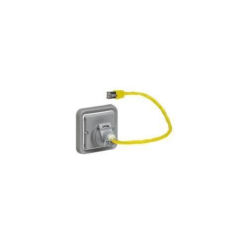 adaptateur prise rj ip44 legrand plexo pour fonction. Black Bedroom Furniture Sets. Home Design Ideas