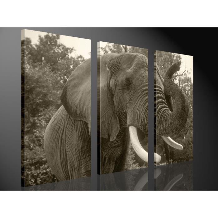 tableau moderne imprim 130x80 elephant achat vente. Black Bedroom Furniture Sets. Home Design Ideas