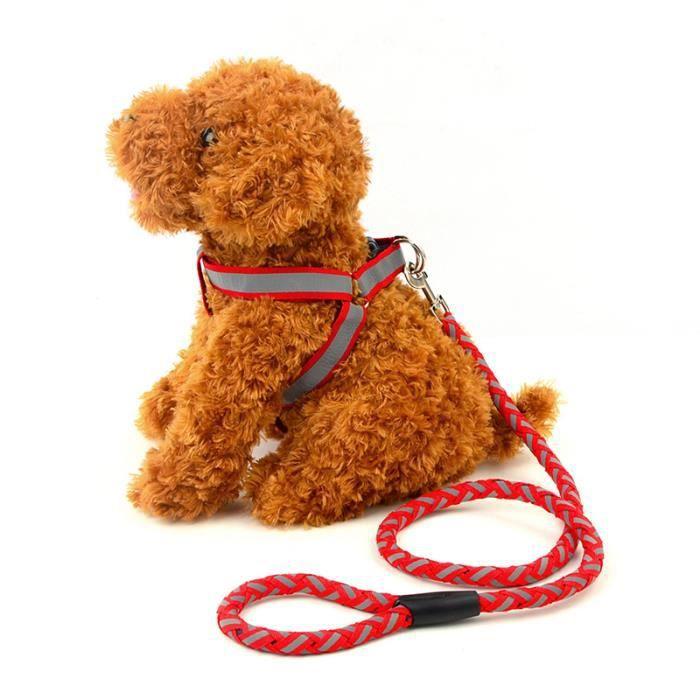 Reflective animal laisse chien harnais avec animal - Laisse corde gros chien ...