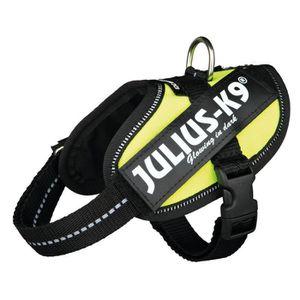 JULIUS-K9 Harnais Power IDC Baby 2/XS?S: 33?45cm jaune fluo pour chien