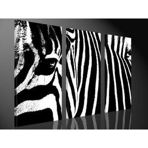 tableau zebre achat vente tableau zebre pas cher. Black Bedroom Furniture Sets. Home Design Ideas