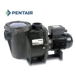 pompe de piscine pentair whisperflo tri bosta achat vente filtration de l 39 eau pompe de. Black Bedroom Furniture Sets. Home Design Ideas