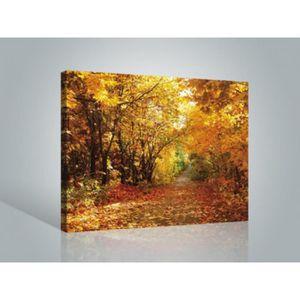 tableaux foret automne achat vente tableaux foret automne pas cher les soldes sur. Black Bedroom Furniture Sets. Home Design Ideas