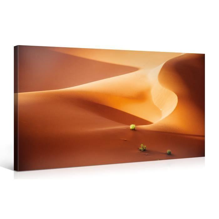 Tableau sur toile courbes sable 100x50cm achat vente for Tableau impression sur toile