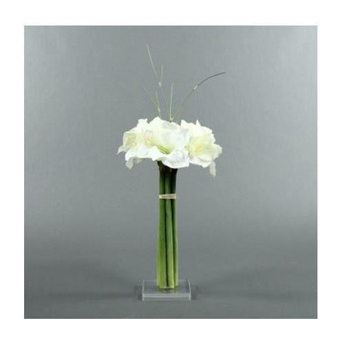 composition amaryllis blanc socle plexi aille unique. Black Bedroom Furniture Sets. Home Design Ideas