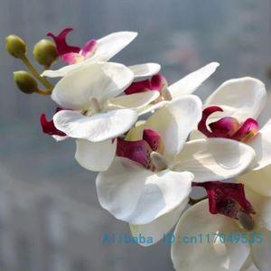 vase deco avec fleur d orchidees achat vente vase deco avec fleur d orchidees pas cher. Black Bedroom Furniture Sets. Home Design Ideas