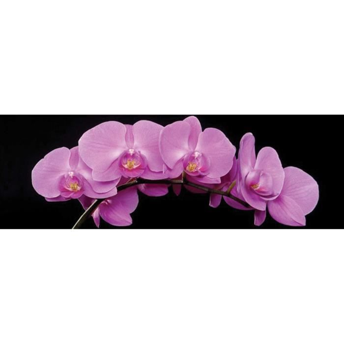 Orchidee rose tableau d co glass art 40x120cm achat for Tableau imprime sur verre