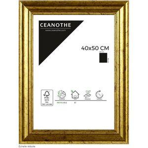 CADRE PHOTO Brio cadre photo Circée doré 40x50 cm