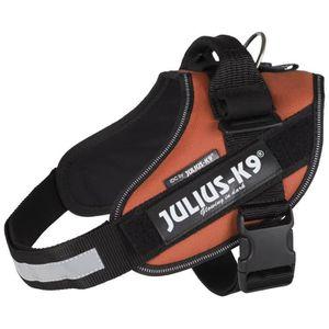 JULIUS-K9 Harnais Power IDC - 0 - M-L : 58-76 cm-40 mm - Orange cuivré - Pour chien