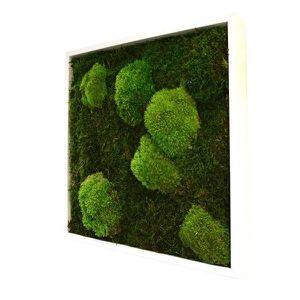 Mousse Stabilisee Achat Vente Mousse Stabilisee Pas: tableau vegetal stabilise pas cher