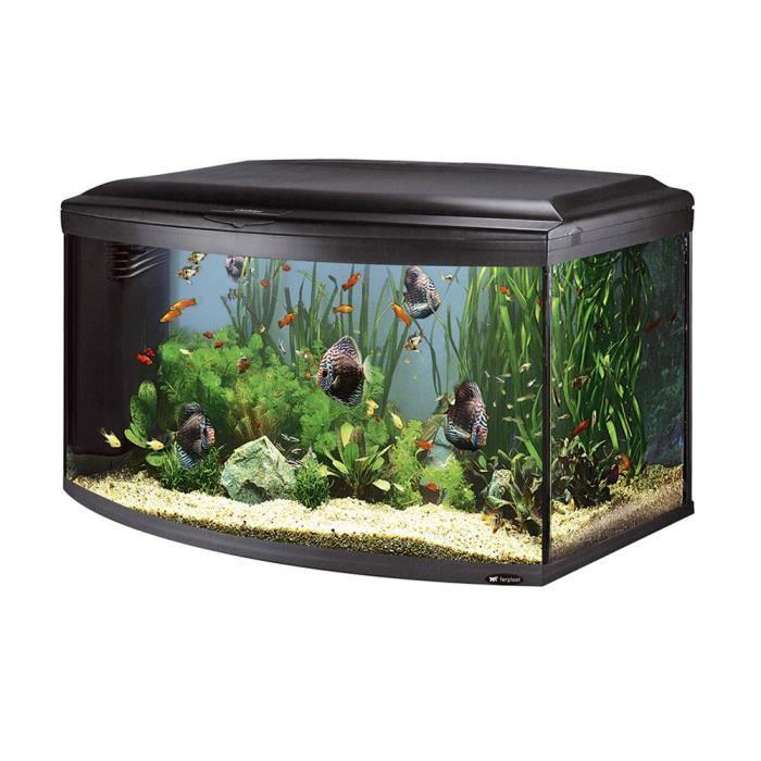 Cayman 110 scenic aquarium en verre noir 110x55x61 5 cm for Vendeur aquarium