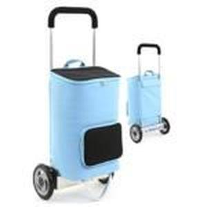 Chariot course electrique