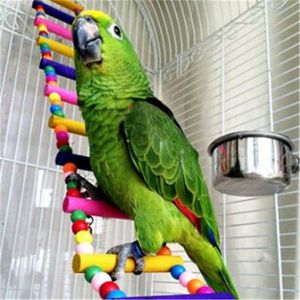 PERCHOIR Colorful Wooden Ladder Pet Toy Pont Perch avec Cro