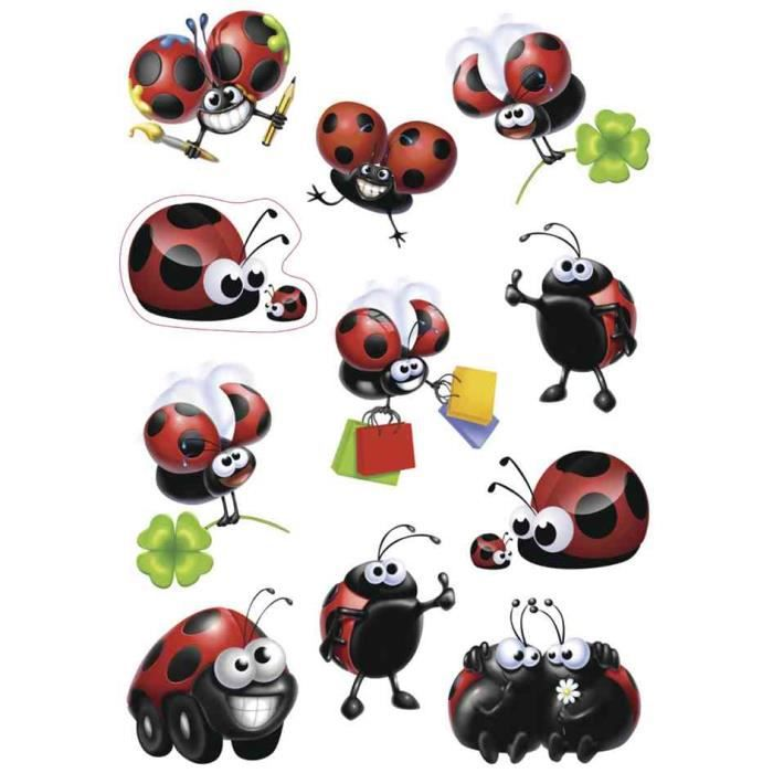 Coccinelle cubes occasion Clasf