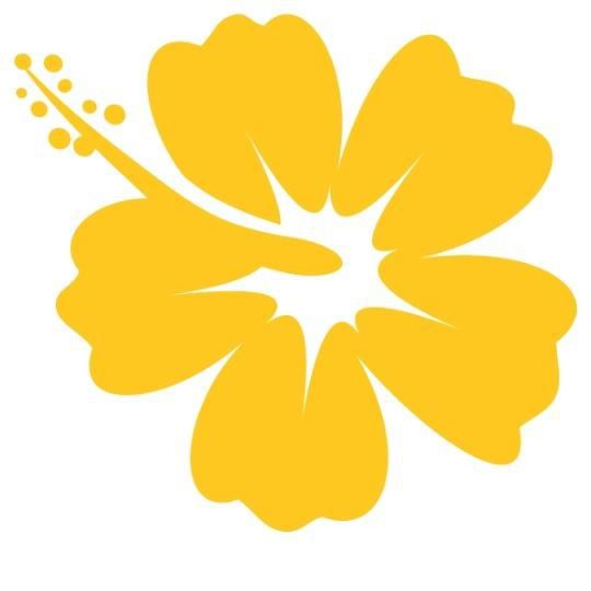 Stickers fleur hibiscus hawai jaune achat vente - Fleure hawaienne ...