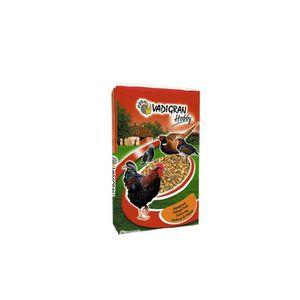 GRAINES VADIGRAN Hobby Mélange de grains pour poule