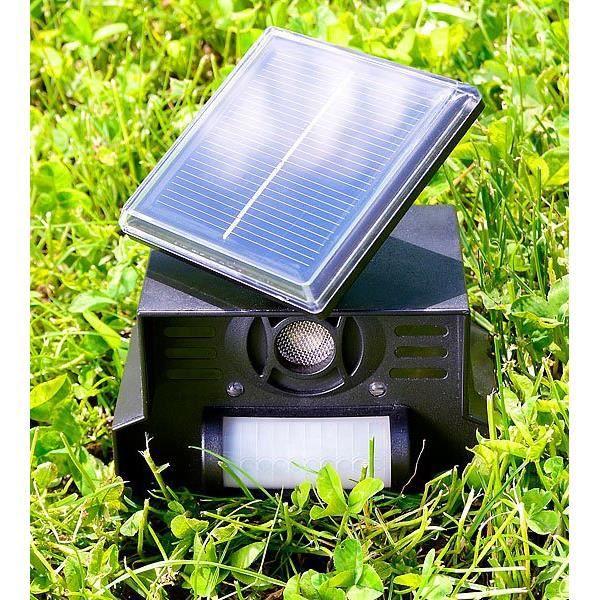 R pulsif sonore chiens et chats solaire megadif achat for Repulsif chien et chat exterieur
