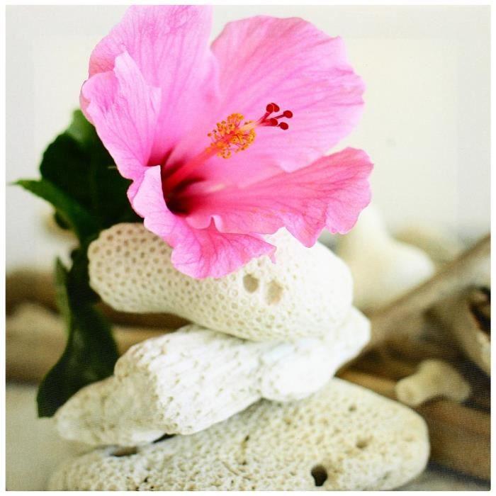 TABLEAU , TOILE Tableau Toile Cadre Zen Fleur Rose Zest Galets \u2026