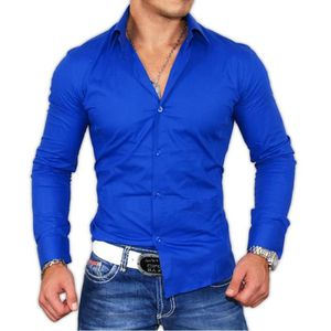 chemise tendance tazzio chemise bleu roi bleu achat. Black Bedroom Furniture Sets. Home Design Ideas