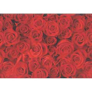"""PAPIER CADEAU Papier cadeau """"roses rouges"""", sur rouleau, 2 m"""