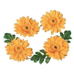Fleurs artificielles flottantes achat vente fleurs for Soldes fleurs artificielles