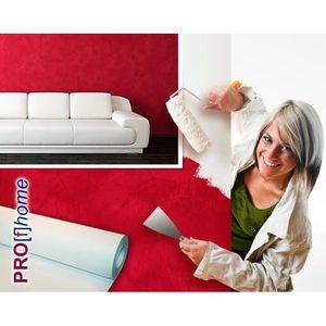 rouleau papier peint a peindre achat vente rouleau papier peint a peindre pas cher les. Black Bedroom Furniture Sets. Home Design Ideas