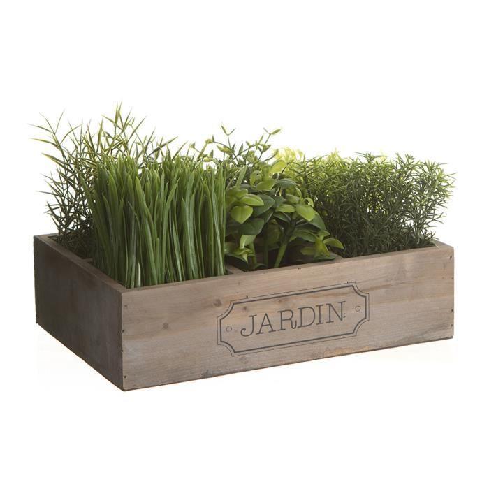 Cagette de plantes vertes jardin achat vente fleur for Plantes decoration jardin