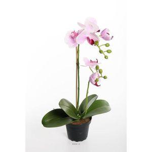 orchidee artificielle en pot achat vente orchidee artificielle en pot pas cher les soldes. Black Bedroom Furniture Sets. Home Design Ideas