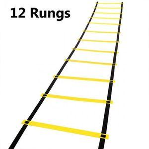 ECHELLE DE GYMNASTIQUE HOMDOX 5M 12-rung échelle gymnastique  échelle rég