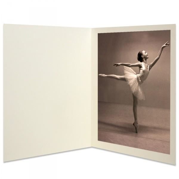 carton pour photos 15x21 15x23 et 18x24 paquet de achat vente chemise sous chemise carton. Black Bedroom Furniture Sets. Home Design Ideas