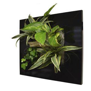 cadre vegetal achat vente cadre vegetal pas cher