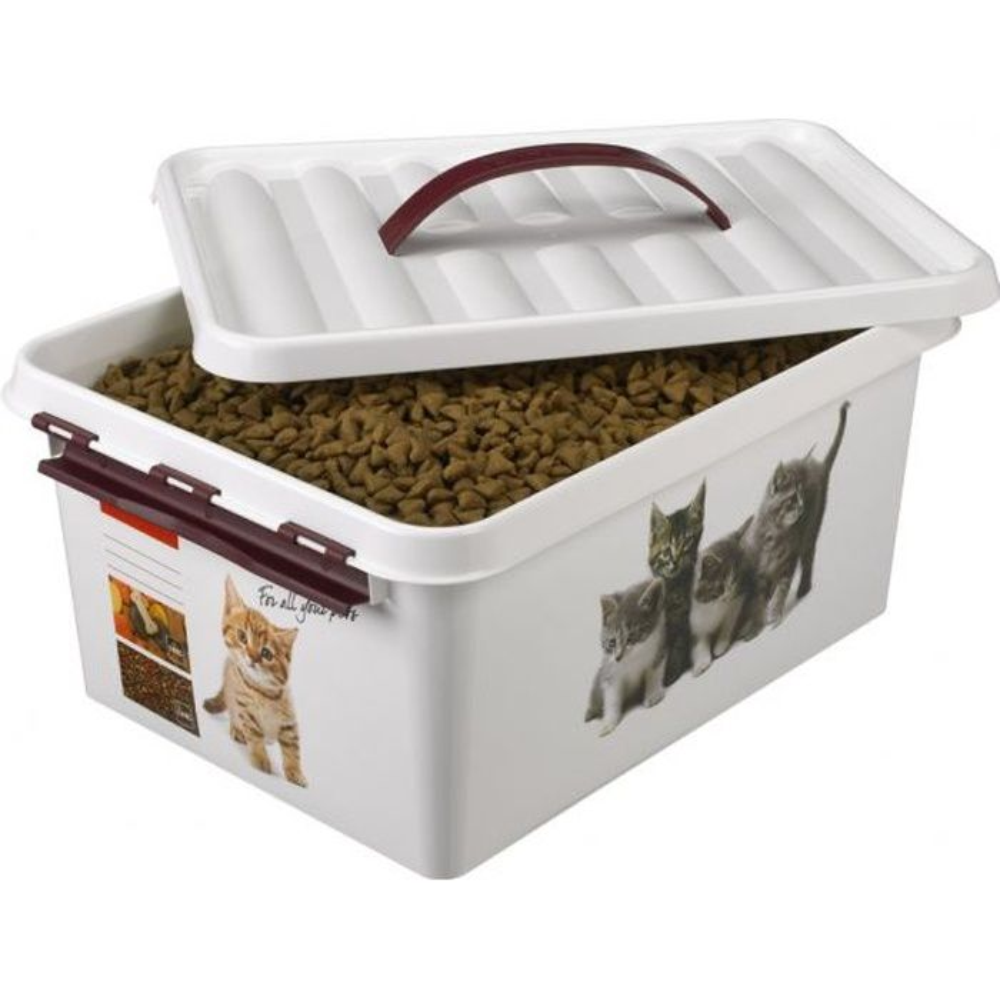boite de conservation color e pour croquettes p achat vente boites de conservation boite de. Black Bedroom Furniture Sets. Home Design Ideas