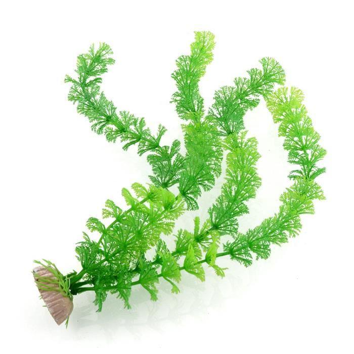 Plante grimpante achat vente d co artificielle plante for Achat plante