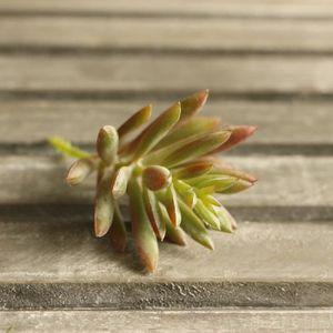 fleurs artificielles lotus achat vente fleurs. Black Bedroom Furniture Sets. Home Design Ideas
