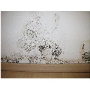 peinture anti salpetre achat vente peinture anti salpetre pas cher cdiscount. Black Bedroom Furniture Sets. Home Design Ideas