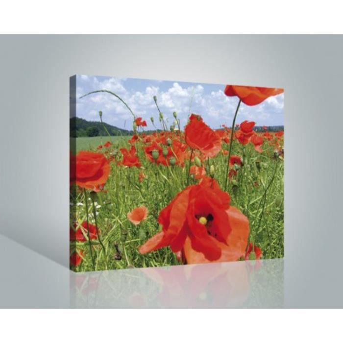 Fleurs poster reproduction sur toile tendue sur ch ssis for Poster sur toile