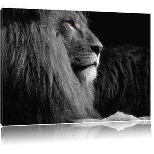 tableau lion noir et blanc achat vente tableau lion noir et blanc pas cher les soldes sur. Black Bedroom Furniture Sets. Home Design Ideas