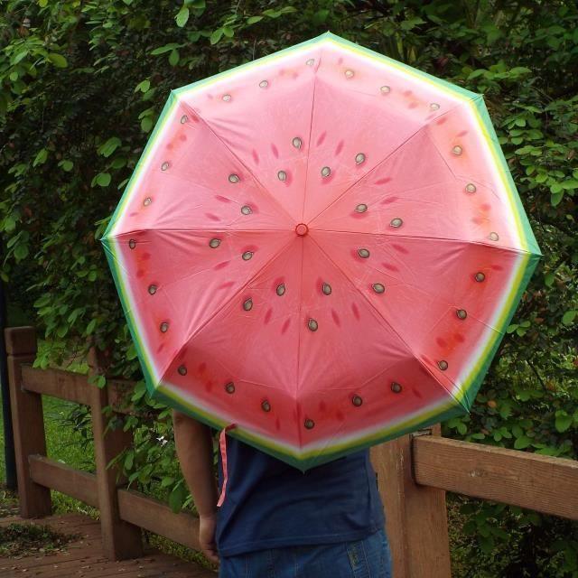 past que parapluie pliant enfant achat vente parapluie 2009828801958 cdiscount. Black Bedroom Furniture Sets. Home Design Ideas