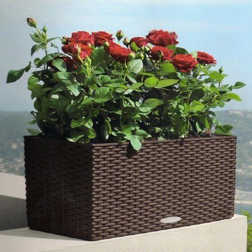 Balconera cottage lechuza fa on r sine tress e 79c achat vente jardini re - Pot en resine tressee ...