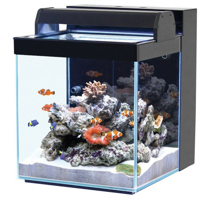 aquarium nano eau de mer 40l noir achat vente aquarium