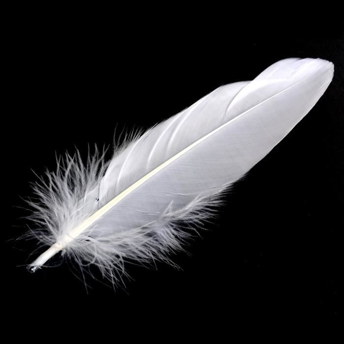 xcsource 100pcs plumes d 39 oie garniture goose feathers pour d coration f te mariage anniversaire. Black Bedroom Furniture Sets. Home Design Ideas