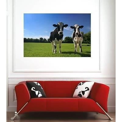 affiche poster d coration murale vaches r f 1756058 6 dimensions d clinaisons papier photo. Black Bedroom Furniture Sets. Home Design Ideas