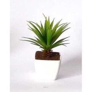 Plante grasse artificielle achat vente plante grasse artificielle pas cher cdiscount - Plante grasse succulente ...