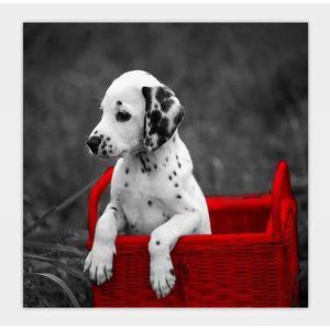 cadre deco chiots et chiens achat vente cadre deco chiots et chiens pas cher cdiscount. Black Bedroom Furniture Sets. Home Design Ideas