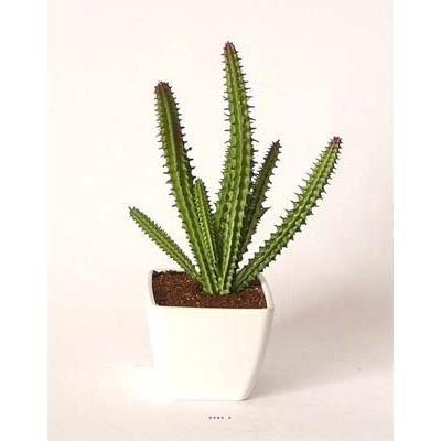 cactee plante grasse artificielle succulente en pot