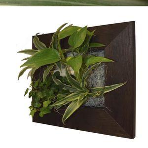 tableau mural vegetal pour interieur achat vente tableau mural vegetal pour interieur pas. Black Bedroom Furniture Sets. Home Design Ideas