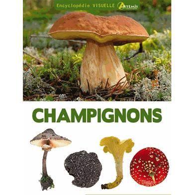 encyclop die visuelle des champignons achat vente livre jean louis lamaison jean marie. Black Bedroom Furniture Sets. Home Design Ideas