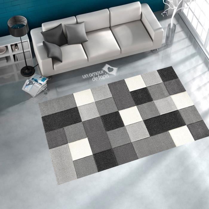 Tapis entree damier carral gris 200x290 tapis moderne - Tapis pour entree de maison ...